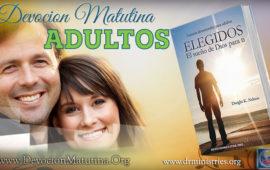 Miércoles 31 de agosto 2016. Matinal adultos – Pruébalos de nuevo, por primera vez – 2